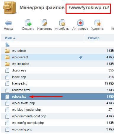 Правильное размещения файла robots.txt